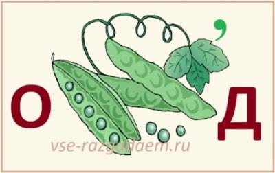 ребусы про овощи