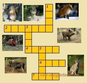кроссворд в картинках, кроссворд по теме, кроссворд для малышей, кроссворд для маленьких, кроссворд животные леса