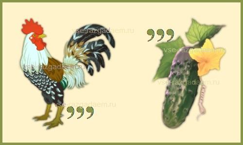 ребус перец, ребусы с ответами, ребусы про овощи, ребусы овощи, ребусы на тему овощи, разгадать ребусы, разгадать ребус, ребусы