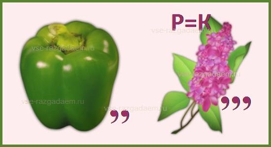 ребус персик, ребусы с ответами, ребусы про фрукты, ребусы фрукты, разгадать ребусы, разгадать ребус, ребусы