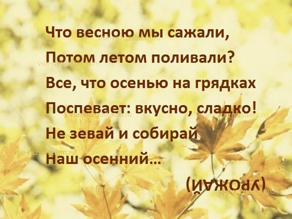 загадка про урожай, загадка урожай, загадки про урожай, загадки про осень, загадка про осень, осенние загадки
